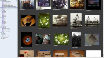Online Photo Sharing Services: A Review