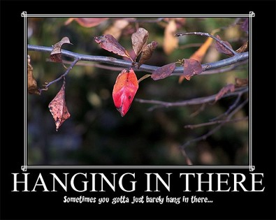 lexmom95-hanging-in-there-poster.jpg