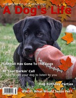Tenor's 15 minutes of fame... he's on the cover of 'A Dog's Life' magazine!.